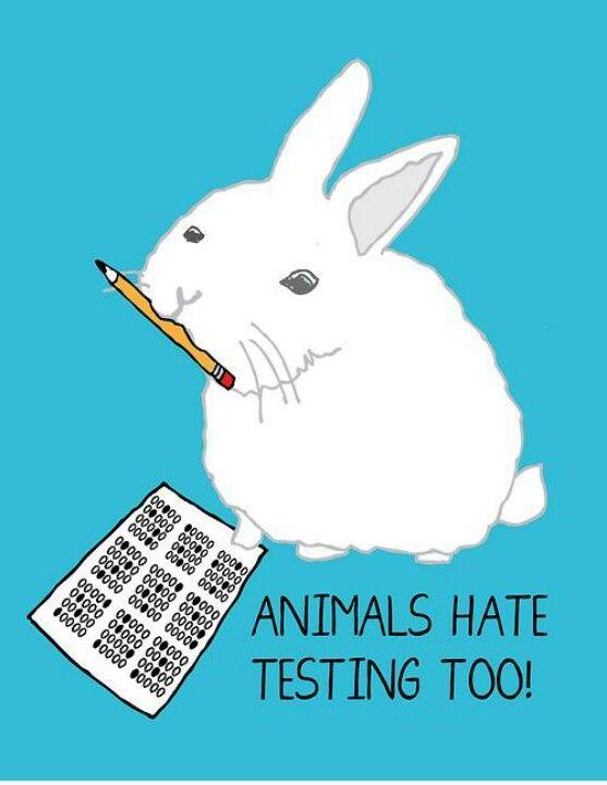 The battle against animal testing