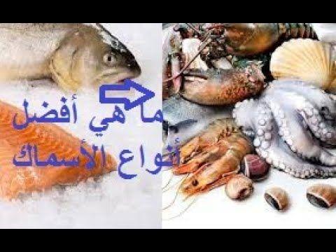 ما هي أفضل أنواع الأسماك من أجل صحة جيدة وكيف تختار أنواع السمك Teddy Bear Teddy Blog Posts
