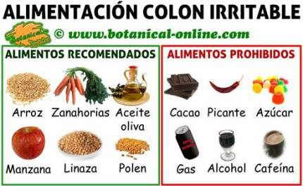 Dieta Para Colon O Intestino Irritable Alimentos