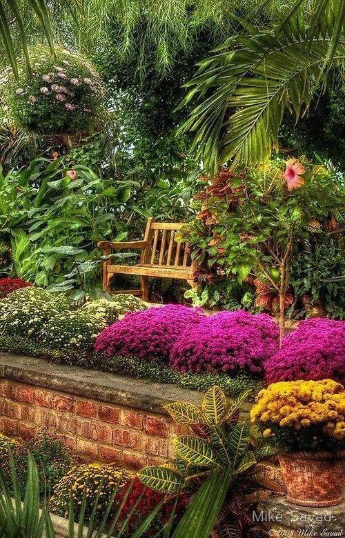 Yellowrose543 Image Via We Heart It Http Weheartit Com Entry 210779255 Jardins Beautiful Gardens Garden View Dream Garden
