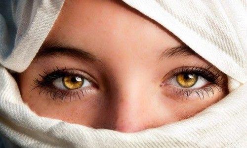 Đôi mắt màu hổ phách là gì? Cách để có mắt nâu hổ phách đẹp ...