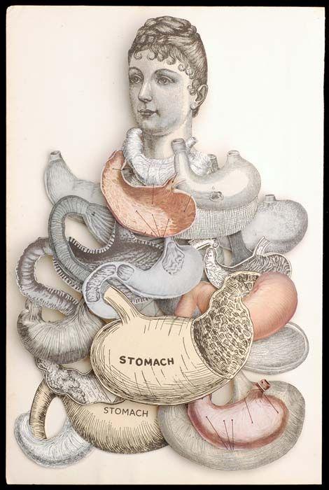 Hope Kroll - The Eternal Now (2011) #anatomy / http://www.hopekroll.com