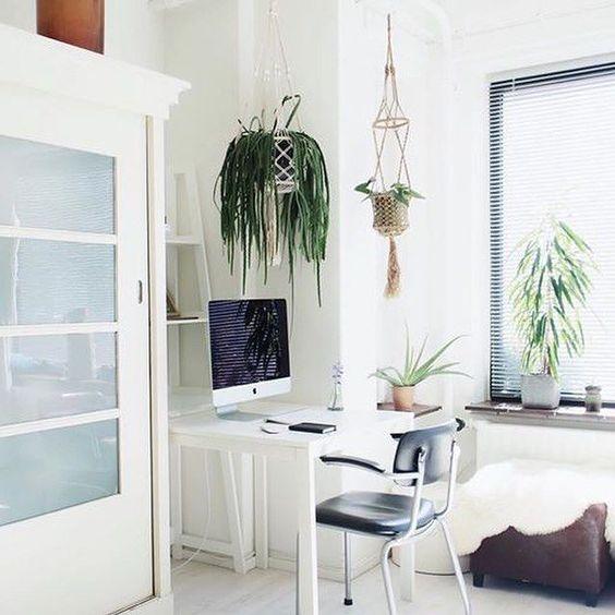 White workspace with hanging plants + vintage chair › via @workspacegoals on Instagram