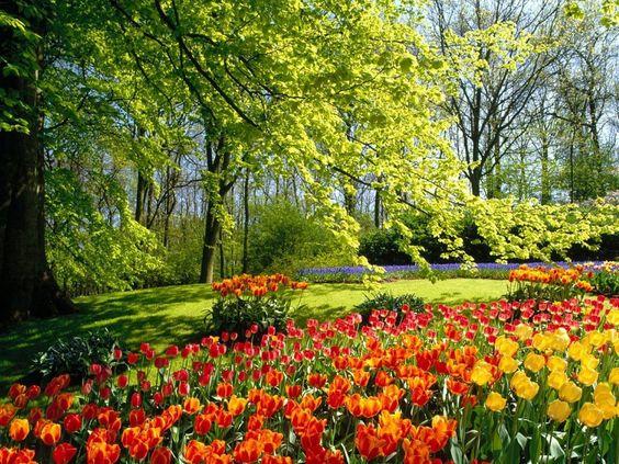 I want to walk through this garden!