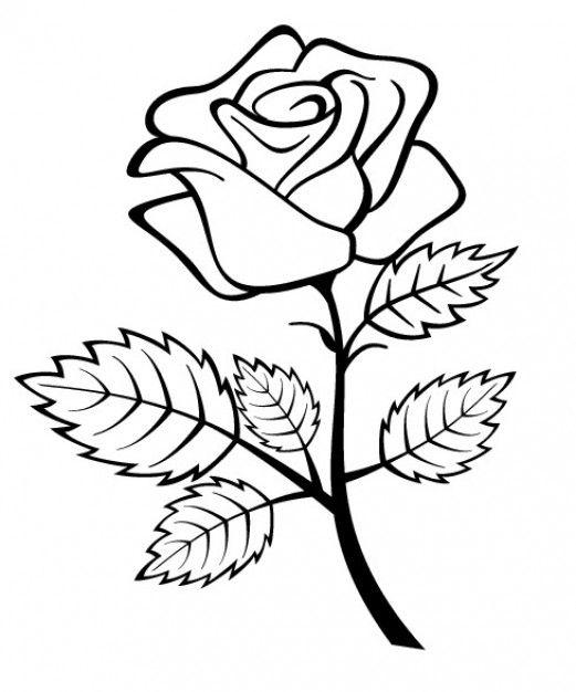 Scarica Gratis Fiore Di Rosa Con Ramo E Foglie Rose Coloring Pages Flower Coloring Pages Flower Sketch Images