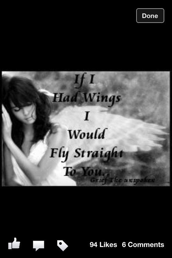 Someday I will take flight....