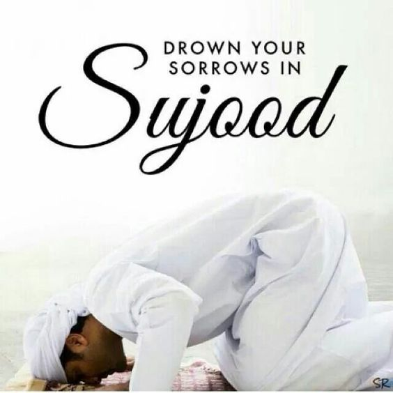 Prostrate to the Almighty!