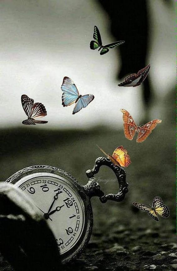 Die Zeit fliegt davon - Sandra Charly - #charly #davon #Die #fliegt #Sandra #zeit