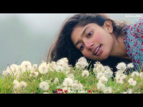 Unake Uyiranen Kanne Kalaimane Suramai Akhiyon Mai Female Version Saipallavi Fahad Status You Cute Love Songs Tamil Video Songs Tamil Songs Lyrics
