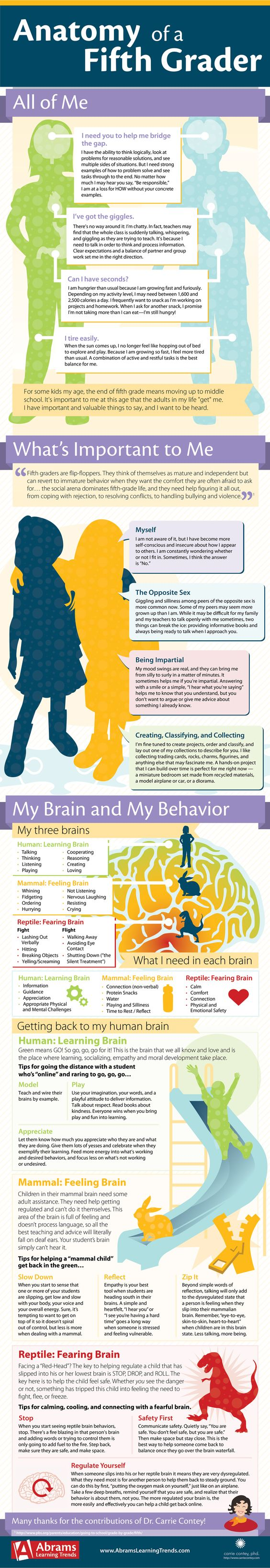 #Infographic with physical, social, cognitive, and emotional norms for #fifthgrade. Very helpful! Usually the oldest student group of the elementary campus, fifth graders keep the adults in the room on their toes. From serious to silly to surly in a matter of minutes, fifth grade can be a time of great physical and emotional flux.