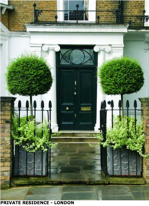 Topiary Trees In Lead Pots