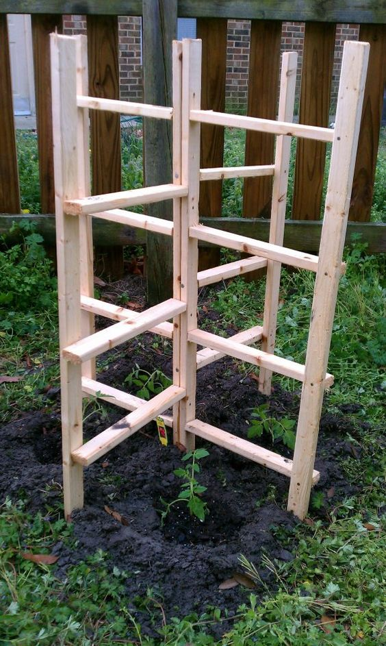 sturdy and freestanding trellis/plant support garden