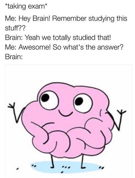 54 Hilarious Memes For Finals Week The Funny Beaver School Quotes Funny Funny School Pictures Tumblr Funny