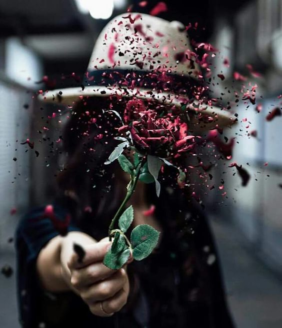 Konuşmam artık, ağır sözler söylemem bir düş için sabahları, göğsüme sedeften bir çiçek işlerim.