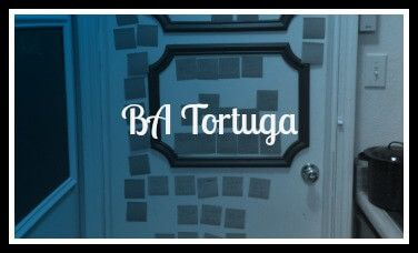 BAT Plotting Door