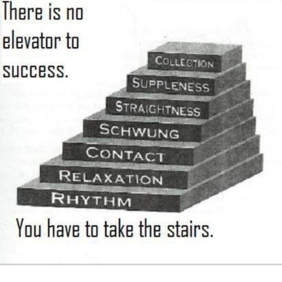 elevator speech online schooling Elevator speech how would you pitch yourself if fate placed you in an elevator with your dream prospect and you only had the time it takes to get from the top of the.