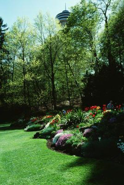 Creating Mounds for flowers for interest in your backyard