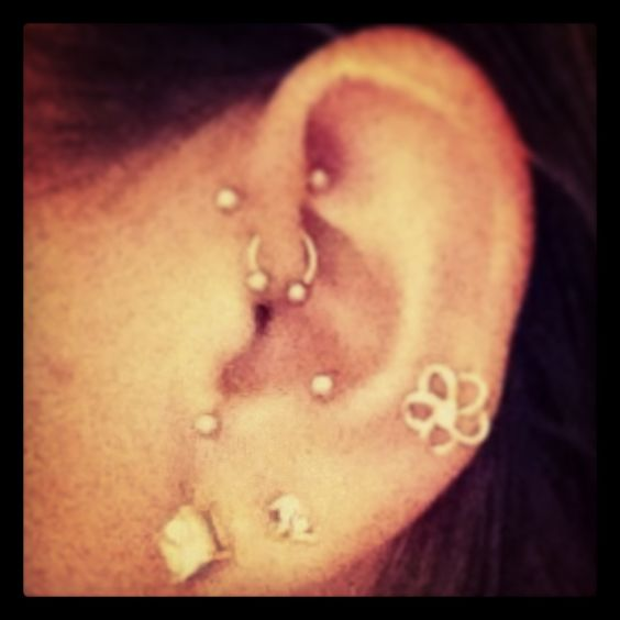 Anti tragus piercing, Anti tragus and Piercing on Pinterest