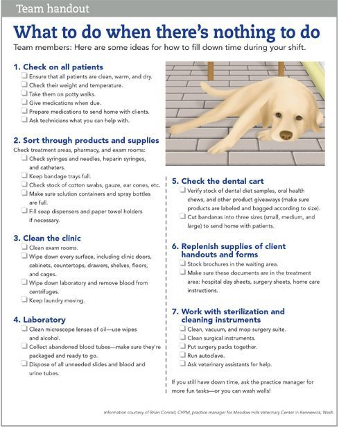 Image Result For Veterinary Hospital Cleaning List Vet Medicine Veterinary Technician Humor Vet Tech School