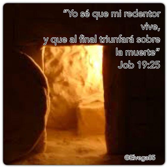 Cristiano que haya sido Cremado? #VisitaMiMuro #rpsp #resurrección #esperanza #elPoderdeDios #MeditacionesdeJóvenes