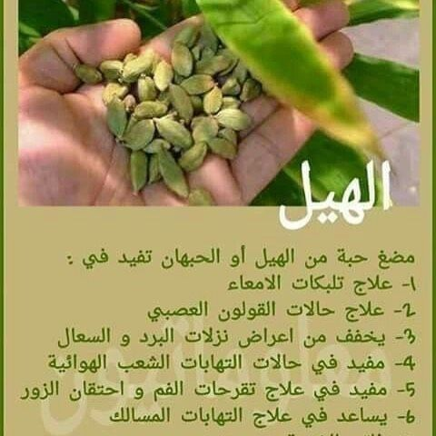Pin By Pink On منوعات Asparagus Vegetables