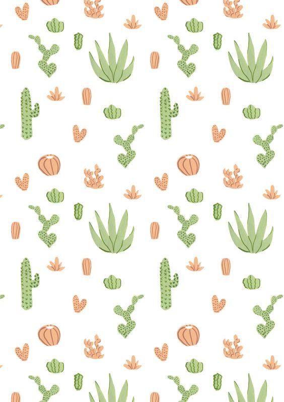 Httpmayabeeillustrationstumblrcompost89870742638cacti patterns
