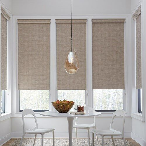 Economy Fabric Blackout Roller Shades Blinds Com In 2021 Blackout Roller Shades Dining Room Window Treatments Contemporary Window Treatments