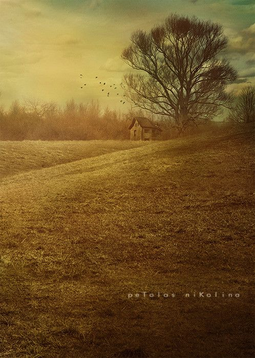 House in field by Nikolina Petolas on 500px