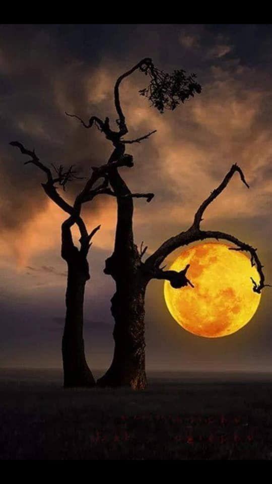 Pin By Amy Shimerman On Amazing Places Moon Photography Beautiful Nature Wallpaper Beautiful Moon