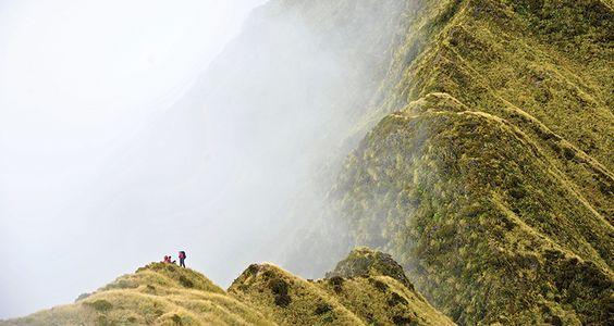 Dickey Ridge in mist