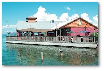 The Old Salty Dog in Sarasota!  You can see dolphins almost every time you eat!