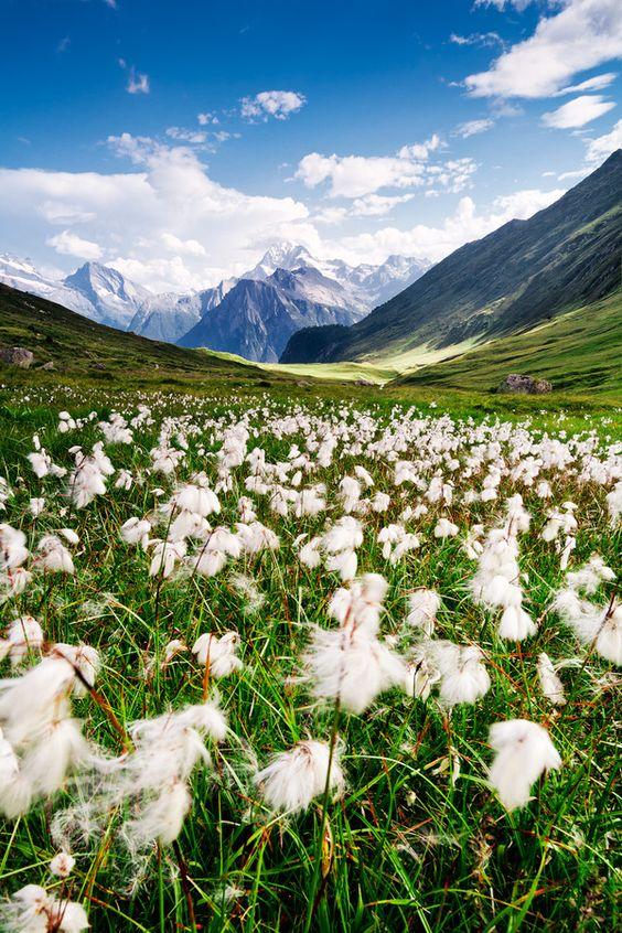 Tämän upean maiseman voit nähdä Sveitsin Alpeilla, joko mennään?