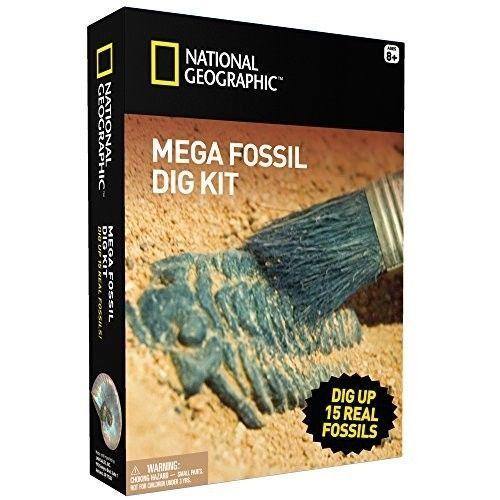 NATIONAL GEOGRAPHIC Mega Fossil Dig Kit Excavate 15 real fossils including D