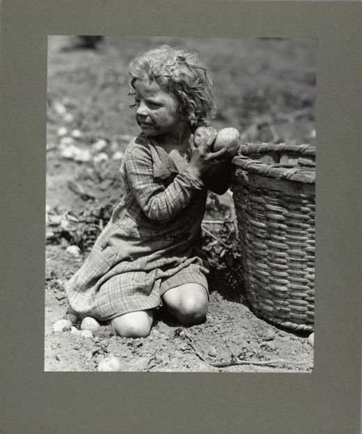 American child labor, c. 1900-1937 Families worked their own farms in my parents day. Chores were done according to age. Mom was the baby, she feed chickens