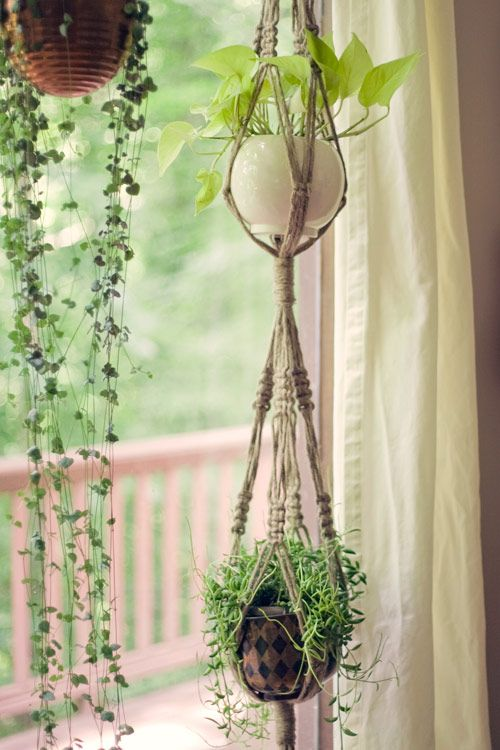 macrame plant hangers...kind of obsessed with these right now...time to start embracing my inner old lady...: