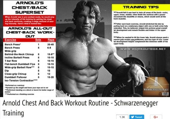 Pin By Ed On Fitness Chest And Back Workout Arnold Chest Workout Back Workout Routine