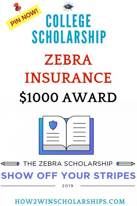 Zebra Scholarship For College Show Off Your Stripes