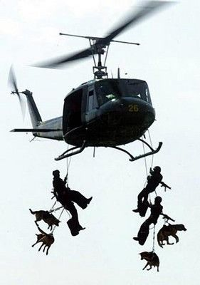 Service dogs of the EXTREME variety!  What a beautiful shot.