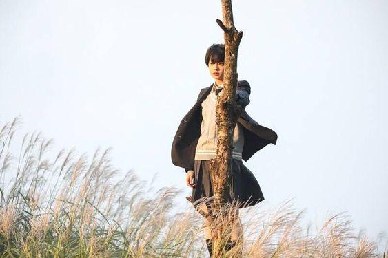 細い木の側に立つ平手友梨奈