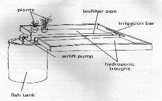 aquaponics design idea