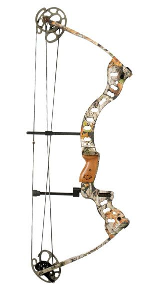 Image detail for -Renegade Archery Company   Compound Hunting Bows