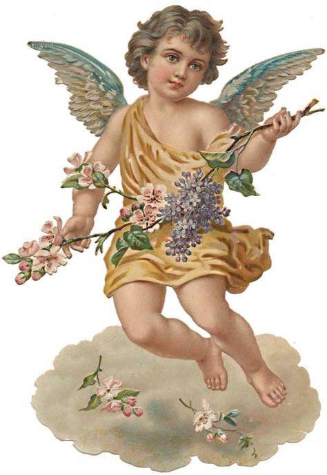 Мы нашли новые пины для вашей доски «Ангелочки».