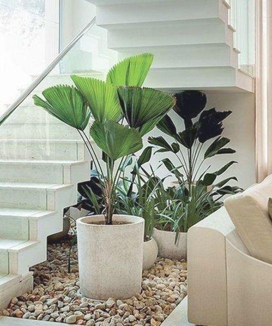 15 Unique Ideas For Indoor Garden Under Stairs Balcony Garden Web Balcony Garden Ideas Indoor Stairs Uniqu In 2020 Garden Stairs Indoor Garden Indoor Zen Garden
