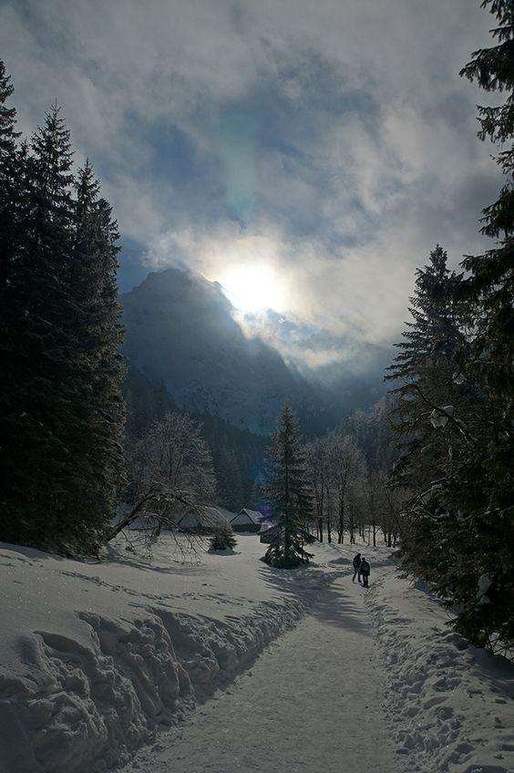 Tatry - Dolina Strążyska