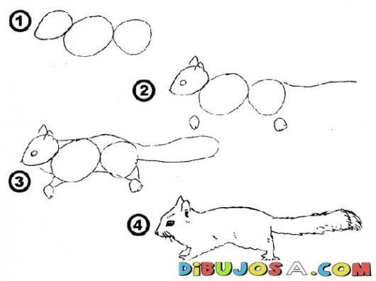 Como aprender a dibujar una ardilla en 4 pasos para pintar - Aprender a pintar ...