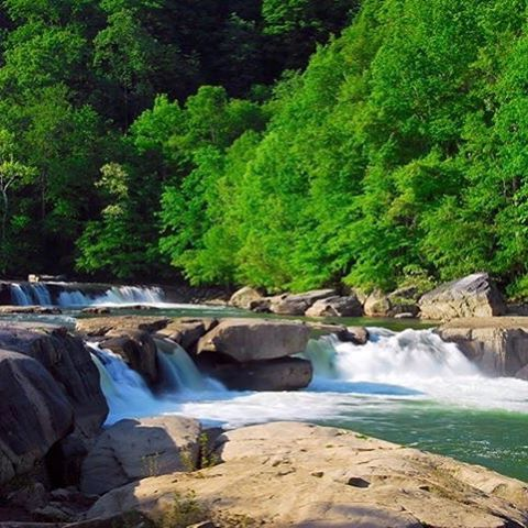"""""""Wild and Wonderful"""" West Virginia offers a plethora of activities for its visitors. West Virginia's rugged terrain was formed by the Appalachian Mountains and was nicknamed the """"Mountain State."""" See the Wild In a place as wild as Marion County, one would expect to find some animals zooming about the terrain. As a result, the [...]"""