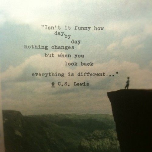 Isn't it funny how day by day nothing changes, but when you look back, everything is different.  ~ C.S. Lewis