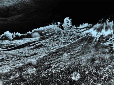 'Hanglicht monochrom' von Rudolf Büttner bei artflakes.com als Poster oder Kunstdruck $18.03