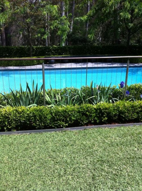 Pool Fence 8211 Great Ideas For Swimming Fun And Safety At The Pool Pool Fencing Landscaping Backyard Pool Landscaping Pool Plants