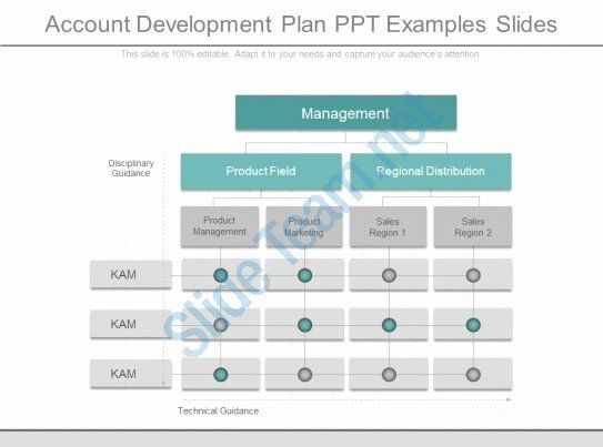 30 Account Plan Template Ppt In 2020 Ppt How To Plan Lesson
